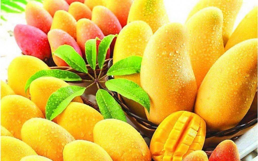 Diş beyazlatıcı doğal  yiyecekler galerisi resim 7