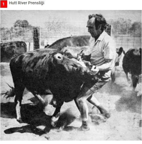 Vergilere sinirlenen çiftçi, kendi ülkesini kurdu ! galerisi resim 1