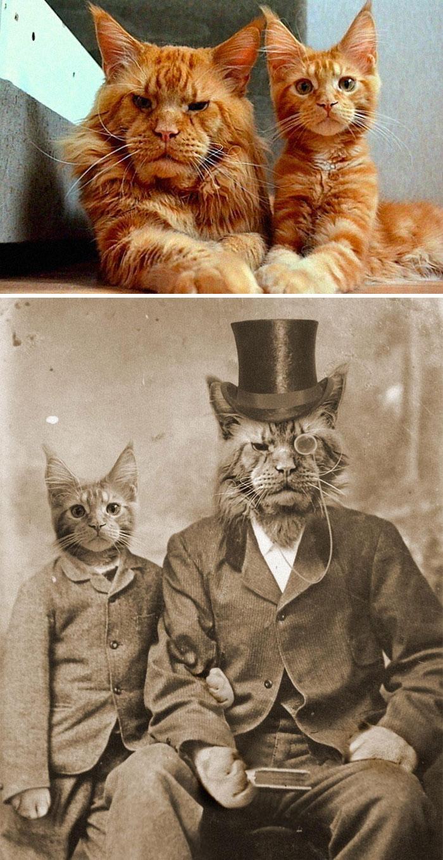 Birbirinden eğlenceli ödüllü photoshop eserleri galerisi resim 1