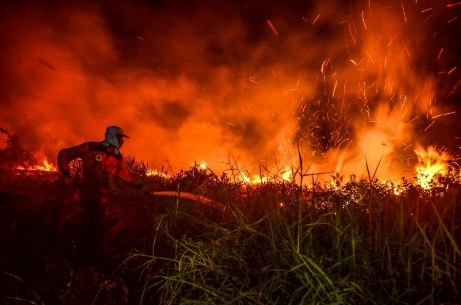 Dünyayı kasıp kavuran sıcak hava dalgasından etkileyici kareler galerisi resim 4