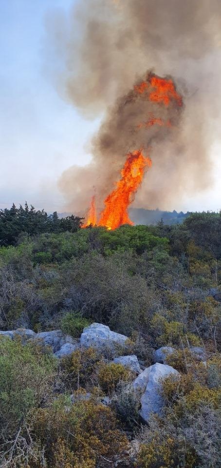 Kantara'da yangın.. Bilanço ağırlaşıyor... galerisi resim 1