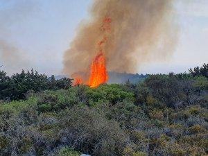 Kantara'da yangın.. Bilanço ağırlaşıyor...