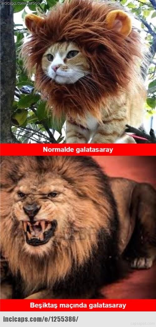 İşte Beşiktaş - Galatasaray maçı sonrası capslar galerisi resim 20