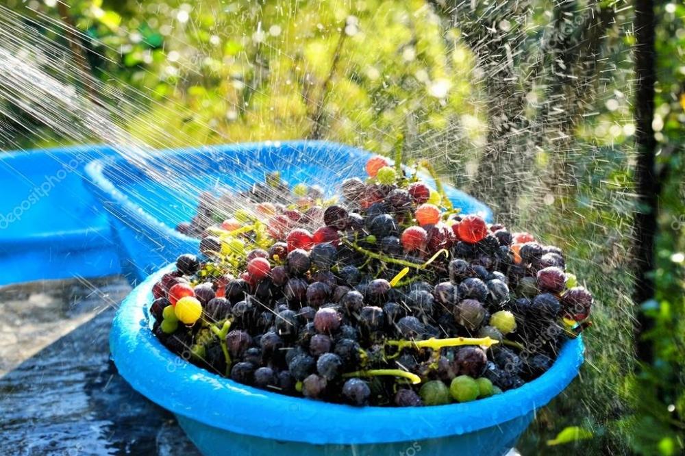 Sebze ve meyveleri doğru yıkama yöntemleri galerisi resim 3