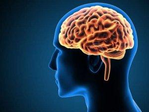Araştırma: Zihnin 'aşırı' kullanılması yaşam süresini kısaltab