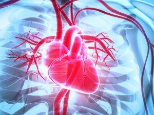 Sağlıksız bir kalbin  belirtileri
