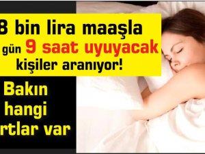 8 bin lira maaşla her gün 9 saat uyuyacak kişiler aranıyor! Bakın hangi