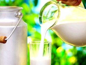 ABD'li araştırmacı: Süt, tükettiğimiz en zararlı gıdalardan biri