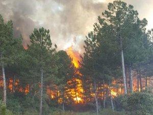 Kuzey Kıbrıs yanıyor, inanılmaz görüntüler