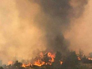Yangından fotoğraflar