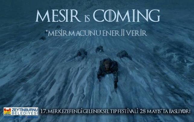 Game of Thrones Zeytinburnu Belediyesi'nin tıp festivalinde: Mesir  galerisi resim 2