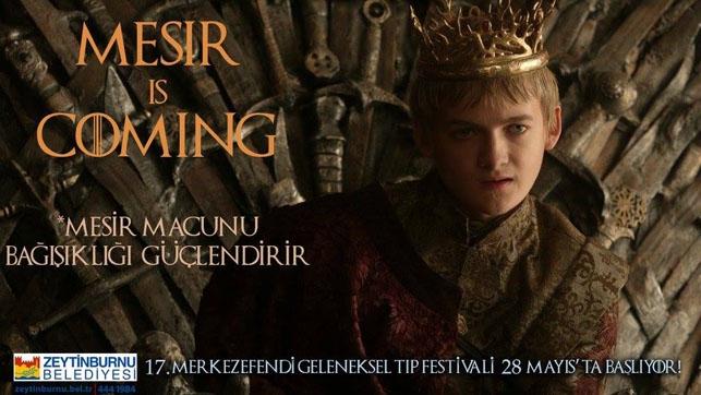 Game of Thrones Zeytinburnu Belediyesi'nin tıp festivalinde: Mesir  galerisi resim 6