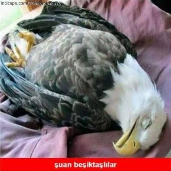 Galatasaray - Fenerbahçe maçı sonrası capsler patladı galerisi resim 11