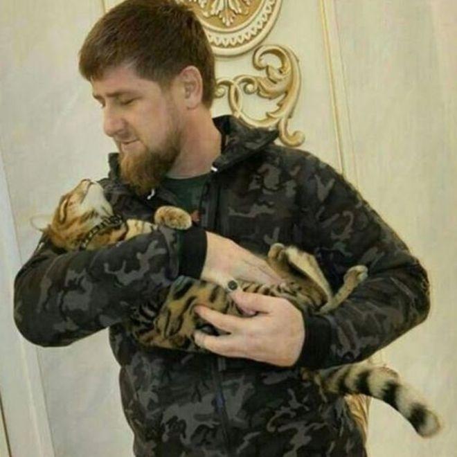 Çeçen liderin kayıp kedi ilanı alay konusu oldu galerisi resim 1
