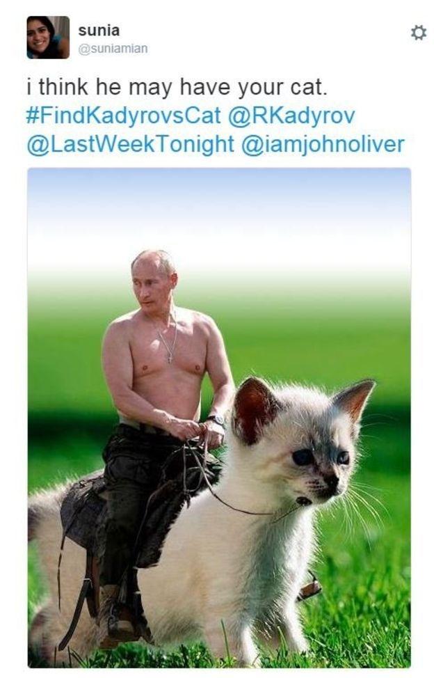Çeçen liderin kayıp kedi ilanı alay konusu oldu galerisi resim 2