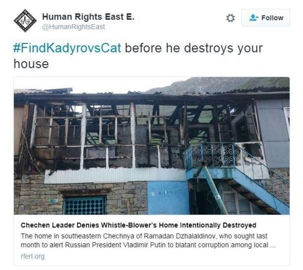 Çeçen liderin kayıp kedi ilanı alay konusu oldu galerisi resim 8