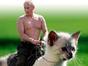 Çeçen liderin kayıp kedi ilanı alay konusu oldu