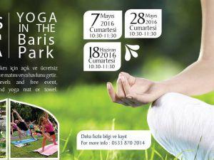 Girne'de parklarda yoga