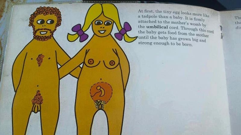 Yıl 1970: Çocuk nasıl yapılır? sorusuna esaslı cevap galerisi resim 6