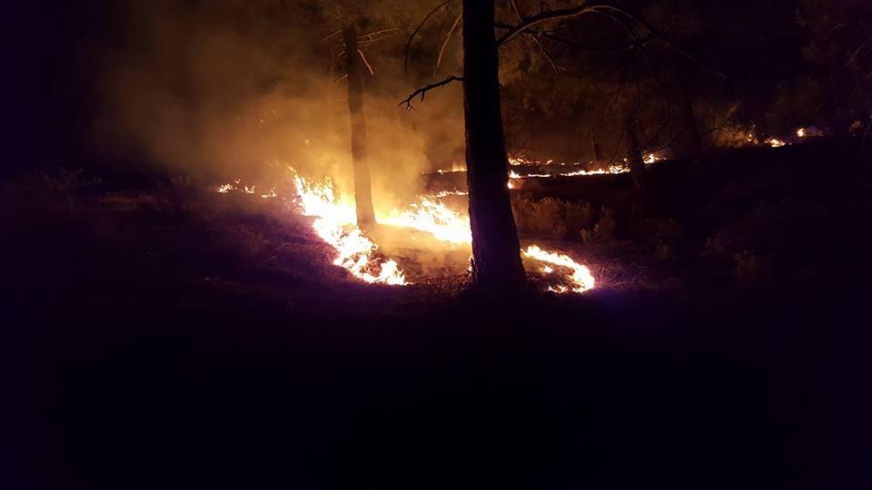 Yangın 2 can aldı. İşte Trodos'taki büyük yangından fotoğraflar galerisi resim 1