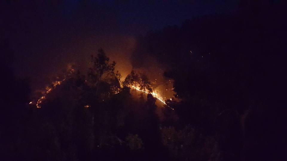 Yangın 2 can aldı. İşte Trodos'taki büyük yangından fotoğraflar galerisi resim 10