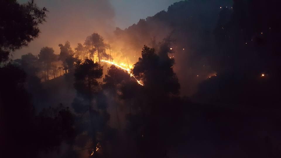 Yangın 2 can aldı. İşte Trodos'taki büyük yangından fotoğraflar galerisi resim 11