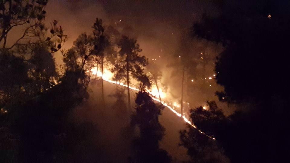 Yangın 2 can aldı. İşte Trodos'taki büyük yangından fotoğraflar galerisi resim 14