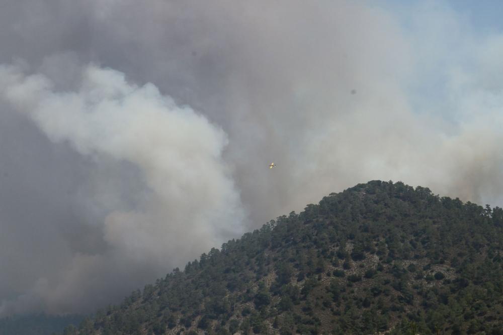 Yangın 2 can aldı. İşte Trodos'taki büyük yangından fotoğraflar galerisi resim 16