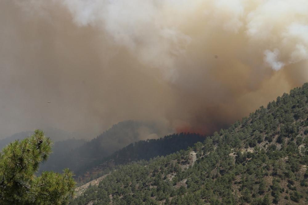 Yangın 2 can aldı. İşte Trodos'taki büyük yangından fotoğraflar galerisi resim 22