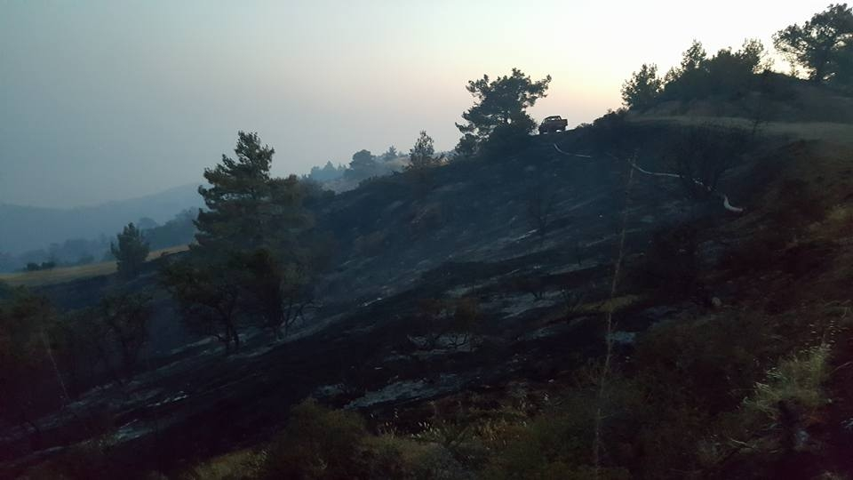 Yangın 2 can aldı. İşte Trodos'taki büyük yangından fotoğraflar galerisi resim 4