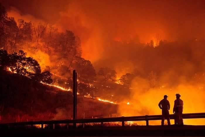 Yangın 2 can aldı. İşte Trodos'taki büyük yangından fotoğraflar galerisi resim 5