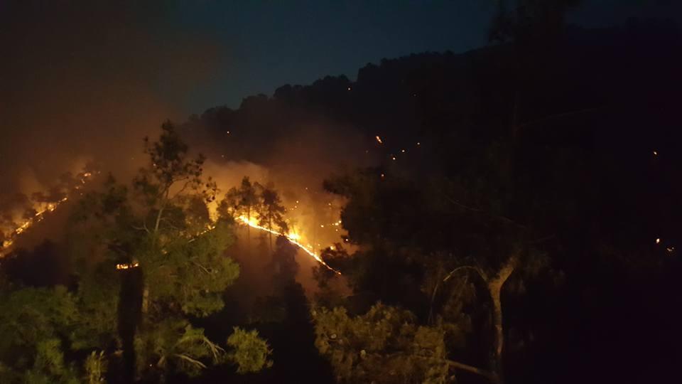 Yangın 2 can aldı. İşte Trodos'taki büyük yangından fotoğraflar galerisi resim 7
