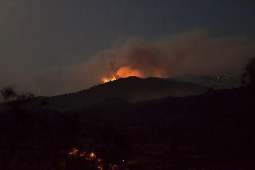 Yangın 2 can aldı. İşte Trodos'taki büyük yangından fotoğraflar galerisi resim 8
