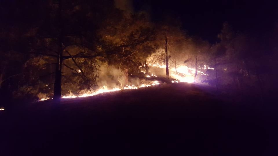 Yangın 2 can aldı. İşte Trodos'taki büyük yangından fotoğraflar galerisi resim 9