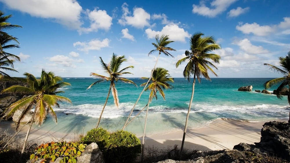 'Evden değil Karayipler'den çalışın': Barbados, bir yıllı galerisi resim 1
