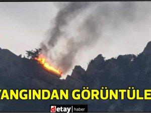 St. Hilarion bölgesinde yangın
