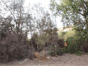 Gazimağusa Belediyesi'nden kritik müdahale