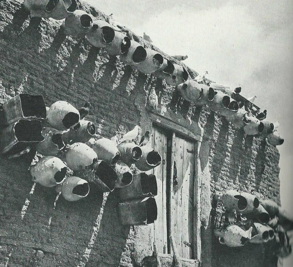 Bu fotoğraflar geçmişten geldi! galerisi resim 62