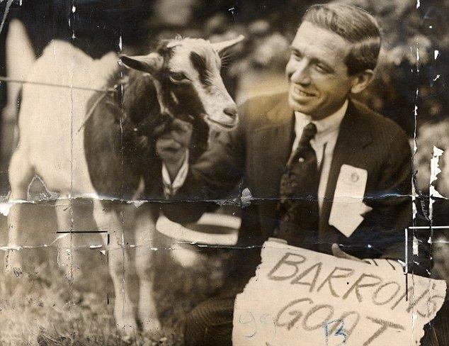 Çiftlikbank'ın kullandığı dolandırıcılık yöntemi Ponzi sistemi nedi galerisi resim 11