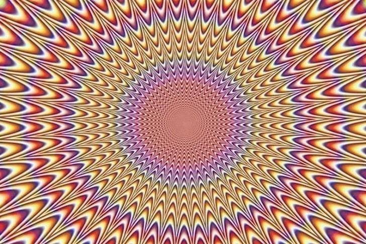 Ne görüyorsunuz? Dikkat ile bakın! galerisi resim 13