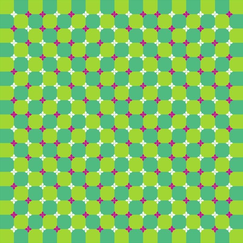 Ne görüyorsunuz? Dikkat ile bakın! galerisi resim 14