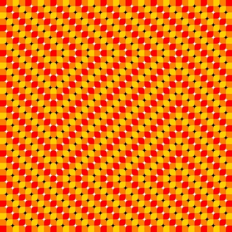Ne görüyorsunuz? Dikkat ile bakın! galerisi resim 18