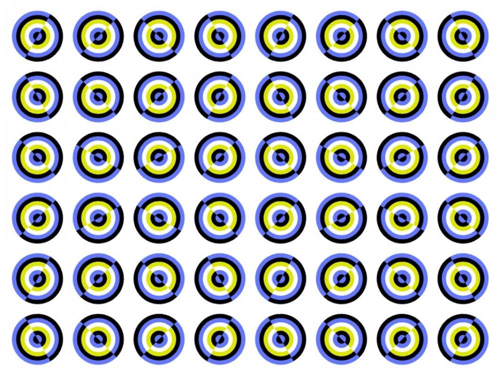 Ne görüyorsunuz? Dikkat ile bakın! galerisi resim 20