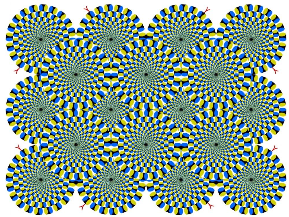 Ne görüyorsunuz? Dikkat ile bakın! galerisi resim 22