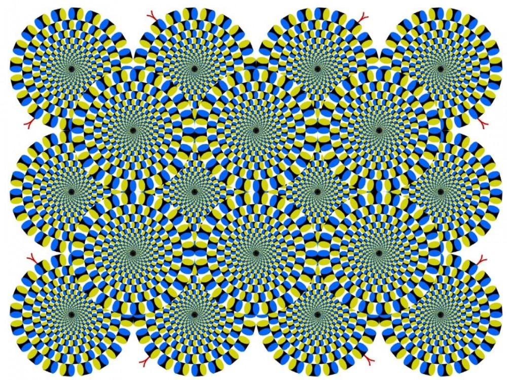 Ne görüyorsunuz? Dikkat ile bakın! galerisi resim 23