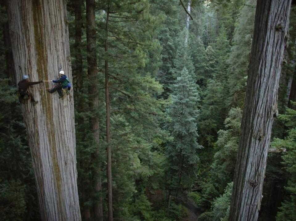 Yükseklik korkusu olanlar bakmasın! galerisi resim 7
