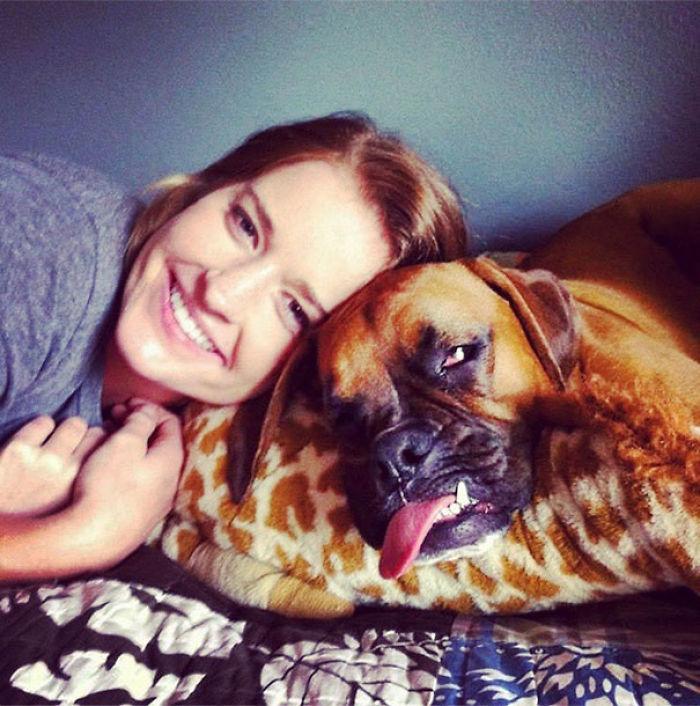 Dünyanın en garip köpek cinsi: Boksörler galerisi resim 130