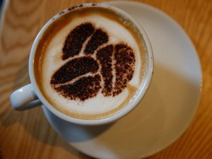 Kahve içmenin sağlığa 5 faydası