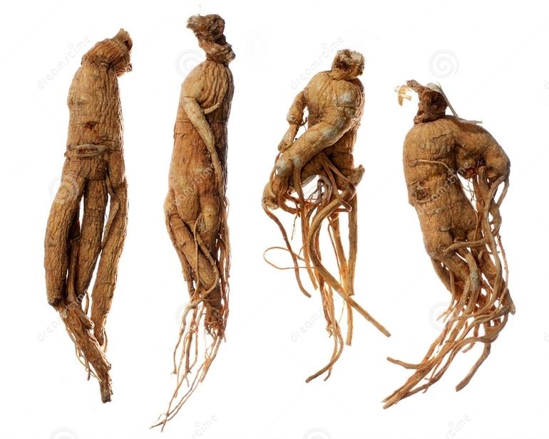 Cinsel gücü artıran 17 bitki galerisi resim 8