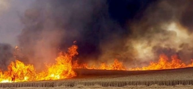 Serdarlıdaki yangını çıkaran şahsın tutukluluğu 7 gün daha uzatıldı